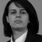 Piața auto din România se va stabiliza în acest an