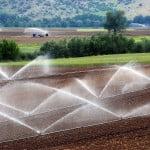 Gestionarea PNDR, discutată de MADR şi de comisar european pentru Agricultură