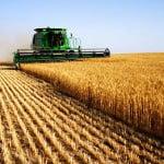 Fermierii pot depune cererile pentru subvenţii până pe data de 15 mai
