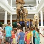Ziua Mondială a Animalelor, sărbătorită la Muzeul Antipa
