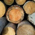 Ministerul Mediului cere Romsilva deblocarea situației de pe piața lemnului