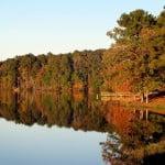 Asociaţiile Patronale de pe Litoral vor cere dizolvarea Asociației Litoral Delta Dunării