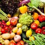 Conferinţa ro.Aliment: Vânzările de produse ecologice ajung la 12 milioane de euro