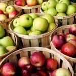 """Programul """"Fructe în şcoli"""" continuă şi în anul şcolar 2016-2017"""