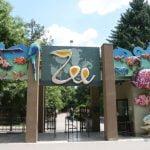 Acces gratuit pentru copii la ZOO Bucureşti, de 1 iunie