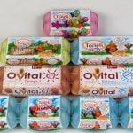 Toneli Holding, cel mai cunoscut producător român de ouă