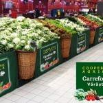 Cooperativa Agricolă Carrefour Vărăști, prima cooperativă înființată de un retailer