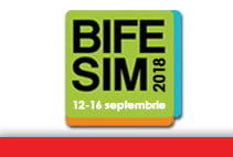 BIFE-SIM