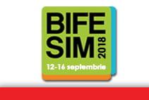 BIFE-SIM